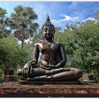 "buddha im Urwald Thailands • <a style=""font-size:0.8em;"" href=""http://www.flickr.com/photos/146118314@N07/31623811220/"" target=""_blank"">View on Flickr</a>"